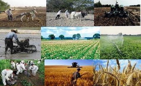 طرح اشتغالزای روستایی