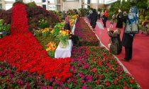 دهکده گل محلات